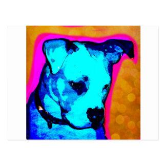 Perrito de Srta. Artemis The american Bulldog de L Postal