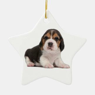 Perrito del beagle adorno navideño de cerámica en forma de estrella