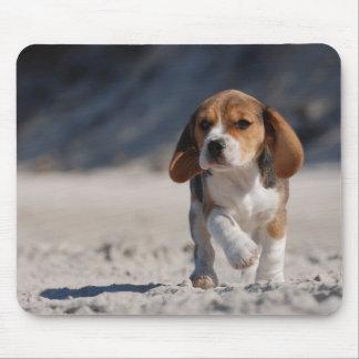 Perrito del beagle alfombrilla de ratón