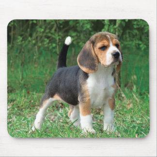 Perrito del beagle alfombrillas de raton