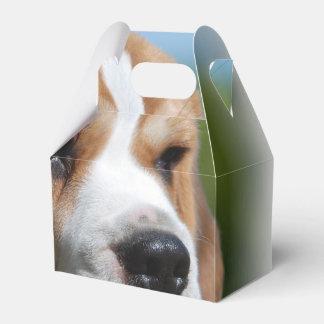Perrito del beagle paquete de regalo para bodas