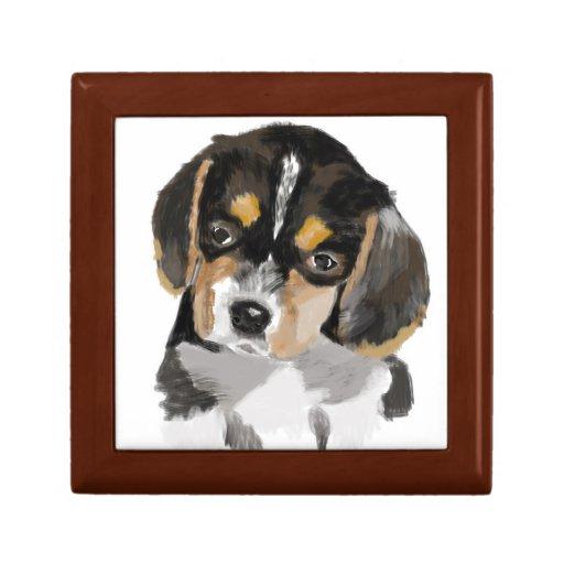 Perrito del beagle cajas de recuerdo