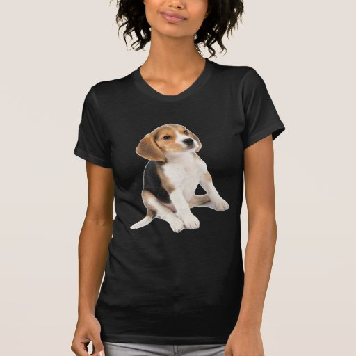 Perrito del beagle camisetas