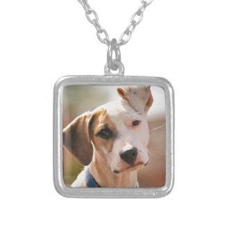 Perrito del beagle colgante cuadrado