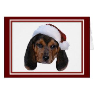 Perrito del beagle con la tarjeta de Navidad del