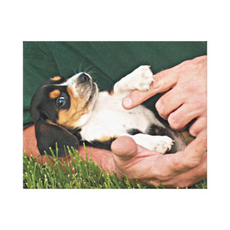 Perrito del beagle del mejor amigo del hombre impresion en lona