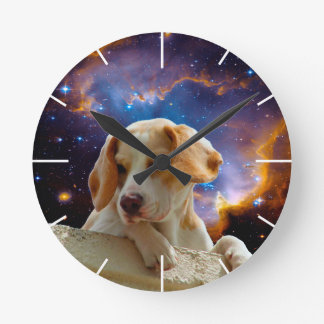 perrito del beagle en la pared que mira el reloj redondo mediano
