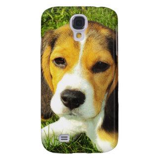Perrito del beagle