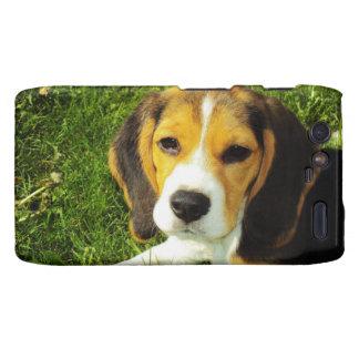 Perrito del beagle droid RAZR funda