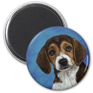 Perrito del beagle imán