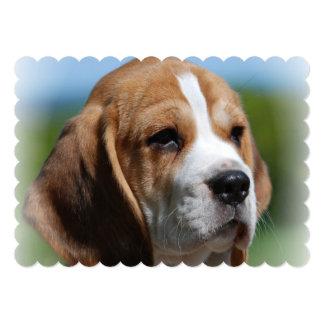 Perrito del beagle invitación 12,7 x 17,8 cm