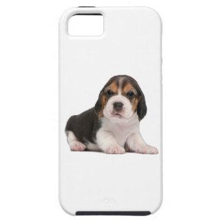 Perrito del beagle iPhone 5 coberturas