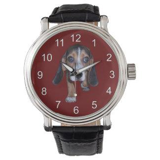 Perrito del beagle que camina - color de fondo relojes de mano