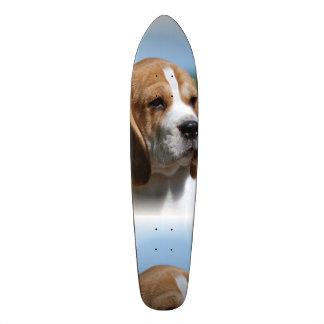 Perrito del beagle monopatín personalizado