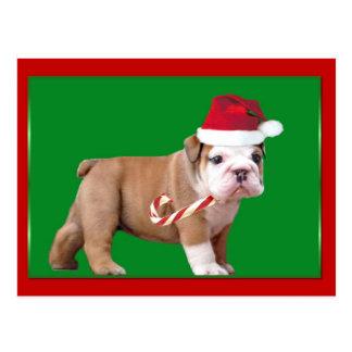 Perrito del dogo del navidad postal