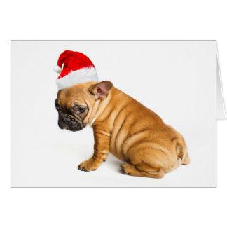 Perrito del dogo francés que lleva un gorra de tarjeta de felicitación
