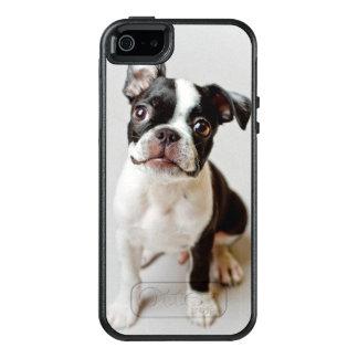 Perrito del perro de Boston Terrier Funda Otterbox Para iPhone 5/5s/SE