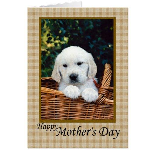 Perrito feliz del día de madre en una cesta tarjetas