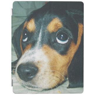 Perrito grande adorable del beagle de los ojos cubierta de iPad