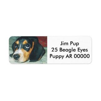 Perrito grande lindo del beagle de los ojos etiquetas de remite