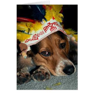 Perrito indio del beagle - tarjeta de felicitación