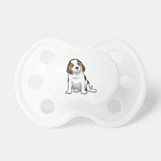 Perrito joven del beagle chupetes de bebe