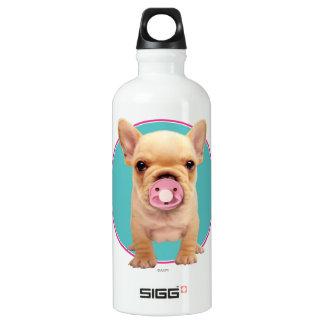 Perrito lindo con el pacificador botella de agua