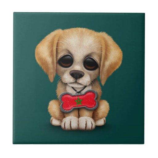 Perrito lindo con la placa de identificación marro azulejo ceramica