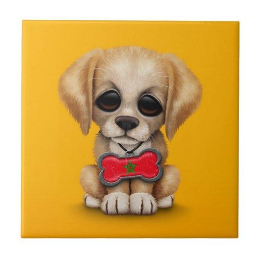Perrito lindo con la placa de identificación marro azulejos