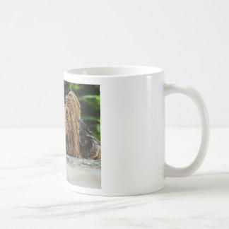 Perrito lindo de Yorkshire Taza De Café