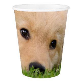 Perrito lindo que soña, fiesta del golden vaso de papel