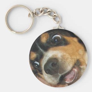 Perrito loco del beagle llavero redondo tipo chapa