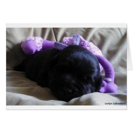 Perrito negro del labrador retriever en una tarjeta de felicitación