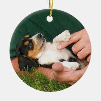 Perrito querido del beagle adorno de cerámica