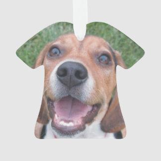 Perrito sonriente del beagle