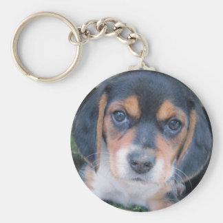 Perrito sospechado sucio adorable del beagle llavero redondo tipo chapa