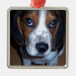 Perrito tonto del beagle de Randy del perro Adorno Navideño Cuadrado De Metal