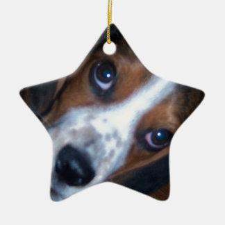 Perrito tonto del beagle de Randy del perro Adorno Navideño De Cerámica En Forma De Estrella