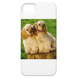 Perritos de cocker spaniel del americano en un funda para iPhone SE/5/5s
