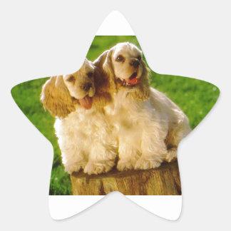Perritos de cocker spaniel del americano en un pegatina en forma de estrella