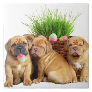 Perritos de Pascua Dogue de Bordeaux Azulejo Cuadrado Grande