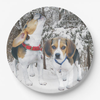 Perritos del beagle en las maderas Nevado Plato De Papel