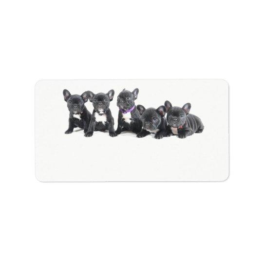 Perritos lindos del dogo francés etiquetas de dirección