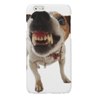 Perro agresivo - perro enojado - perro divertido