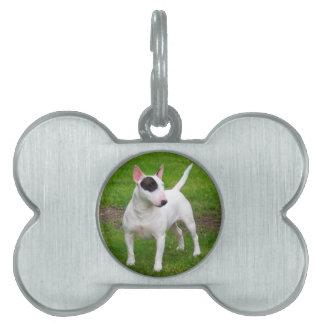 Perro americano de Terrier de pitbull Placa Para Mascotas