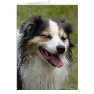 Perro australiano de risa tarjeta de felicitación