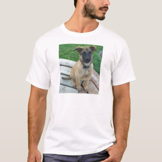 Perro belga de Malinois del pastor Camiseta