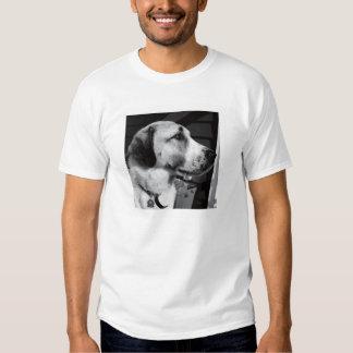 perro camisas