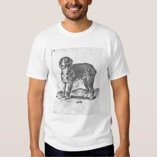 Perro Camisetas