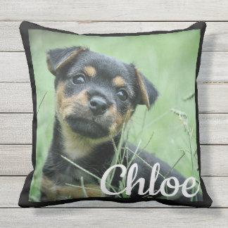 Perro casero de Customizeable o almohada al aire